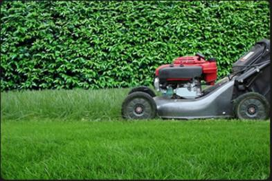 gar on de jardin refaire sa pelouse. Black Bedroom Furniture Sets. Home Design Ideas